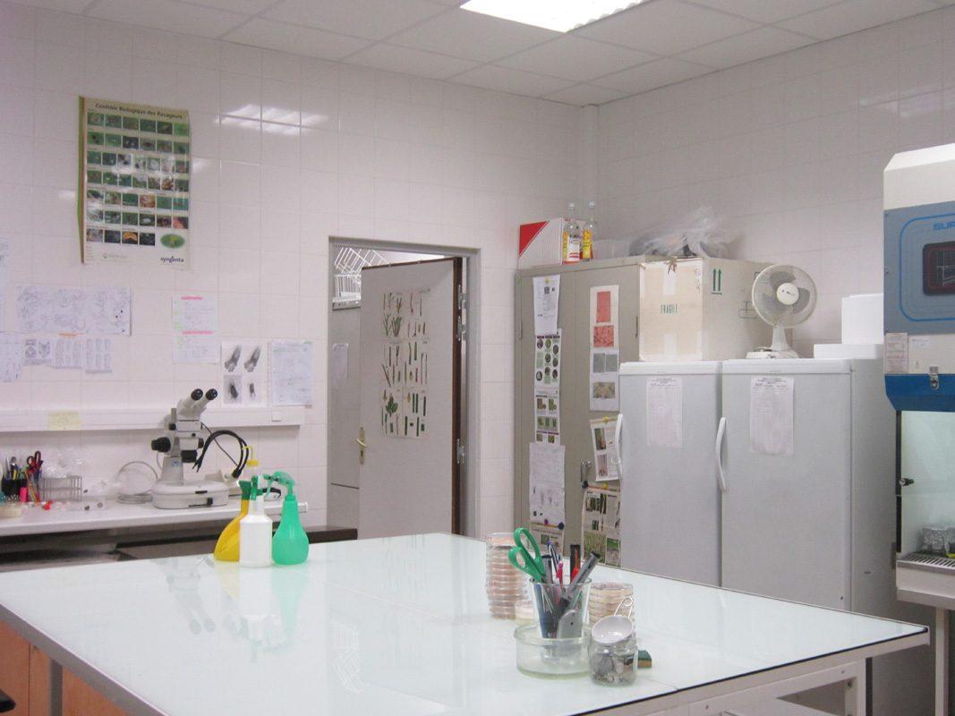 laboratoire-01