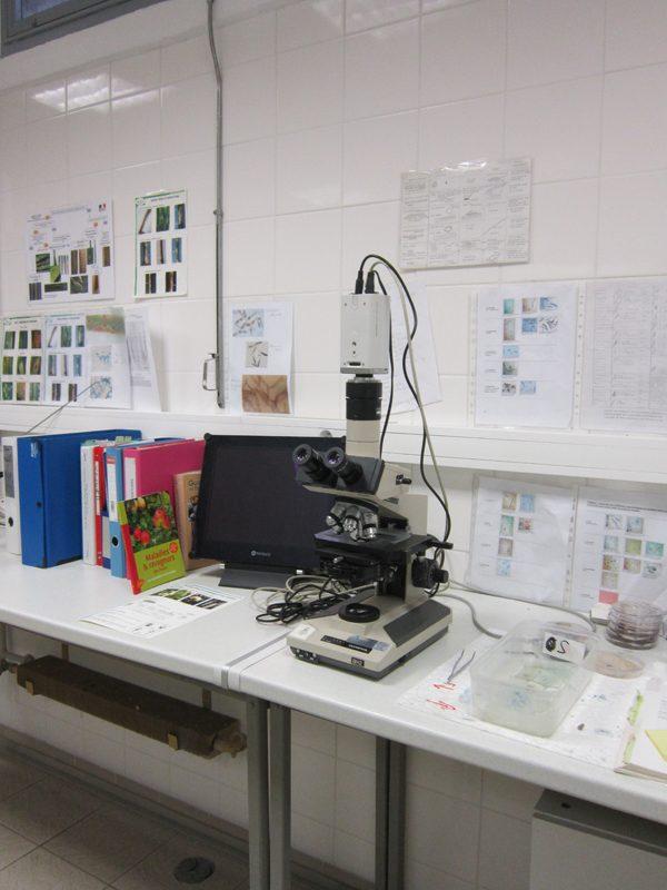 laboratoire-02